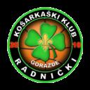 radnicki2019